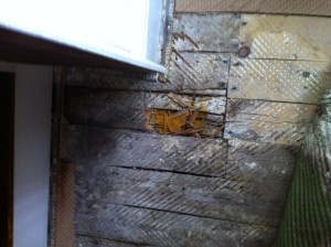 dry wet rot treatments mansfield nottingham 3